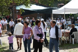 Asino Day 2010
